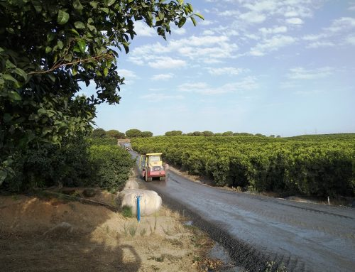 TEST OF THE EFFECTIVENESS OF DUSTEX ON THE ROAD OF BOLLO FARM IN HUELVA