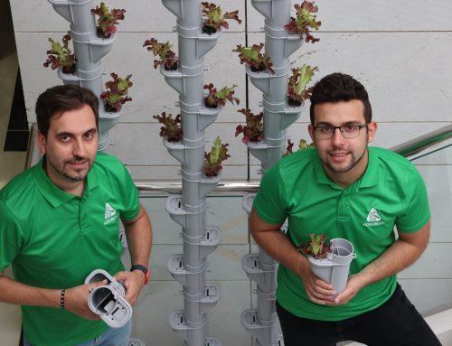 NACE SAV, LA AGRICULTURA VERTICAL A MEDIDA, DE LA MANO DE AGROINTEC